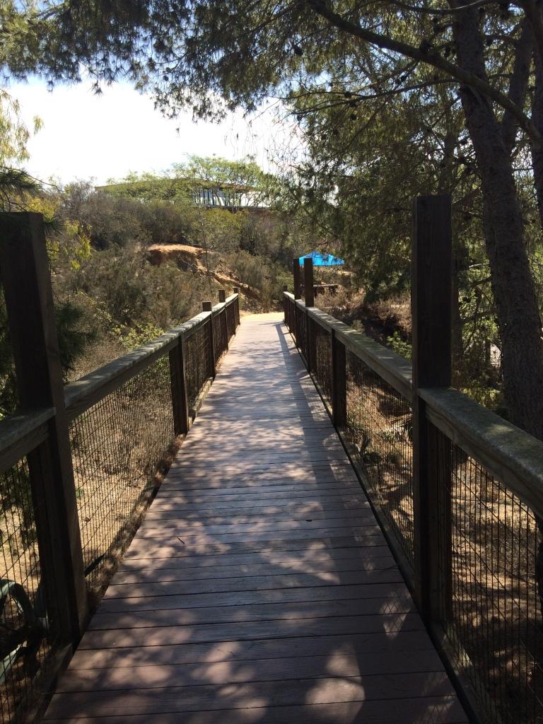 Walkway between amphitheater and building complex.
